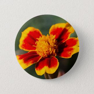 flower in the garden 6 cm round badge
