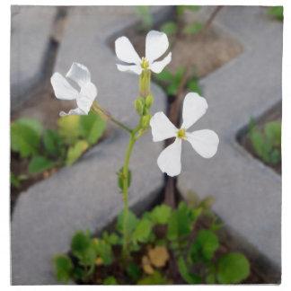 Flower in the parking lot napkin