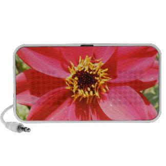 Flower ipad iphone Speakers