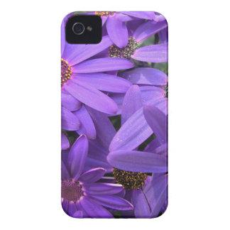 flower.jpg iPhone 4 cases