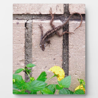 FLOWER LIZARD PHOTO PLAQUE