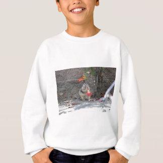 Flower Loving Squirrel Sweatshirt