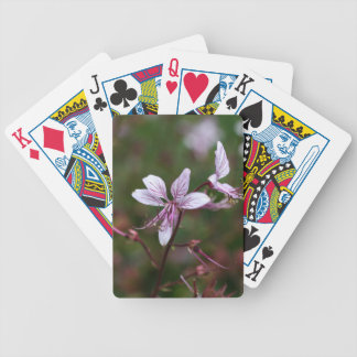 Flower of a burning bush bicycle playing cards