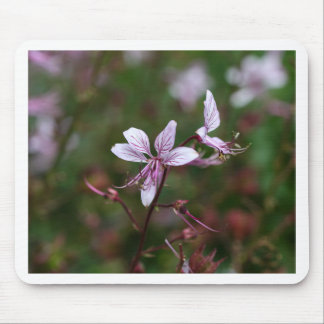 Flower of a burning bush mouse pad