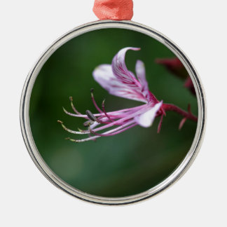 Flower of a burning bush Silver-Colored round decoration