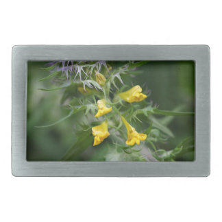 Flower of a crested cow wheat belt buckles