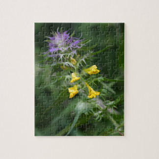 Flower of a crested cow wheat puzzle