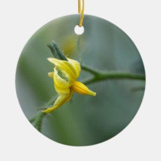 Flower of a Cucumber  plant Ceramic Ornament