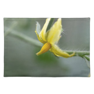 Flower of a Cucumber  plant Placemat