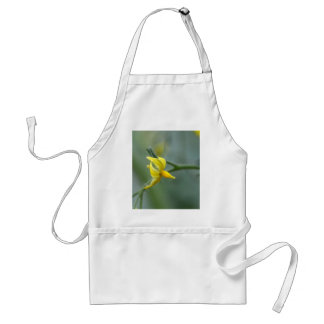 Flower of a Cucumber  plant Standard Apron