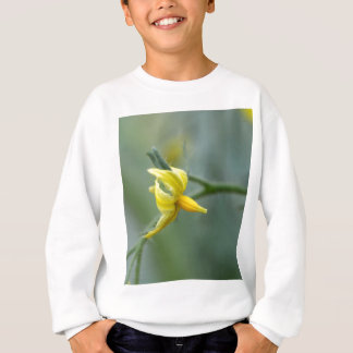 Flower of a Cucumber  plant Sweatshirt