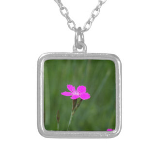 Flower of a maiden pink silver plated necklace