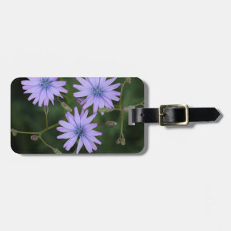 Flower of a mountain lettuce bag tag