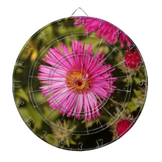 Flower of a New England aster Dartboard