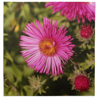 Flower of a New England aster Napkin