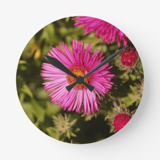 Flower of a New England aster Round Clock