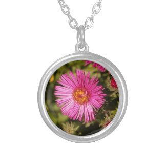 Flower of a New England aster Silver Plated Necklace