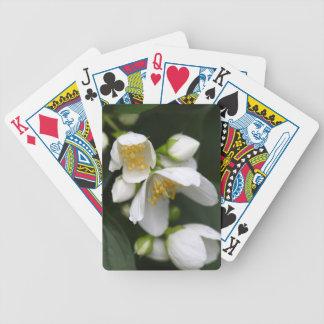 Flower of an English dogwood bush Poker Deck