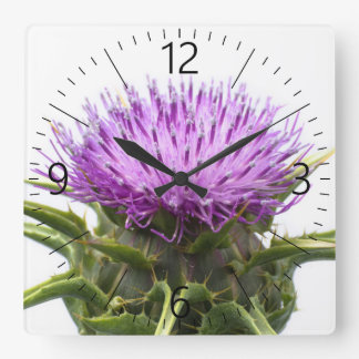 Flower of burdock square wall clock