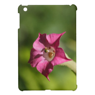 Flower of tobacco (Nicotiana tabacum) iPad Mini Case