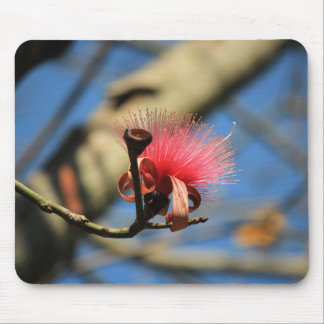 Flower on a Tree Mouse Pad