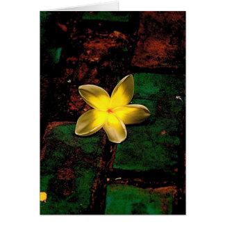 Flower on Cobble Card