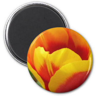 Flower One Magnet