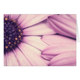 Flower petals blank card