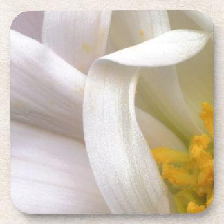 Flower Pollen Coasters