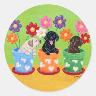 Flower Pot Labrador Puppies Round Sticker
