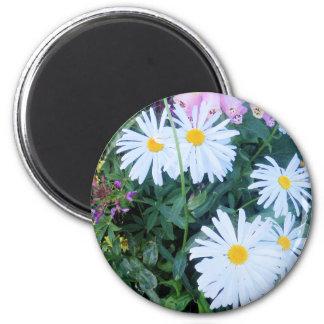 flower power in alaska magnet