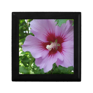 Flower Pretty In Pink Small Square Gift Box