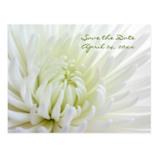 Flower Save the Date Wedding Postcard
