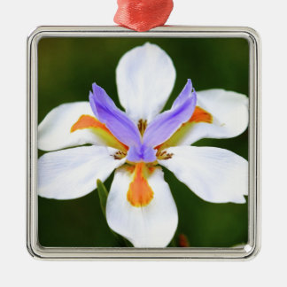 Flower Silver-Colored Square Decoration