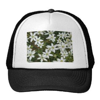 flower,star flower  white trucker hats