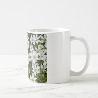flower,star flower  white coffee mug