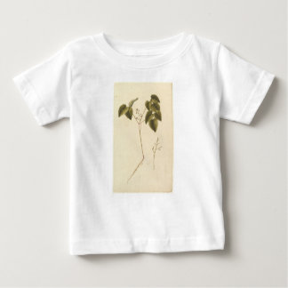 Flower Study - Watercolor Baby T-Shirt