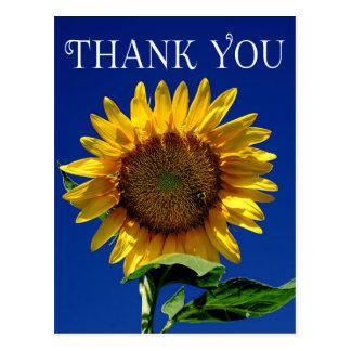 Flower Thank You Yellow Sunflower Floral Postcard