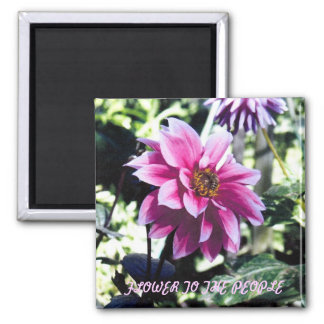 Flower to the People Square Magnet