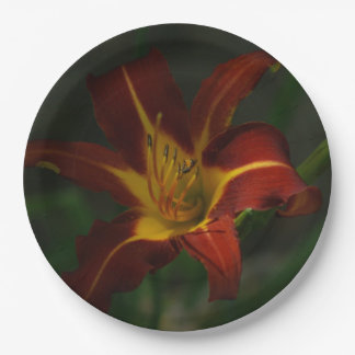 Flower with small Bee, Metal Wall Art Print. Paper Plate