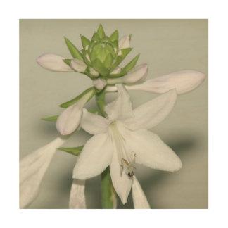 Flower, Wood Photo Print. Wood Canvas