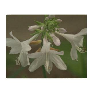 Flower, Wood Photo Print. Wood Wall Decor