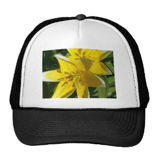 flower,yellow star flowers mesh hat