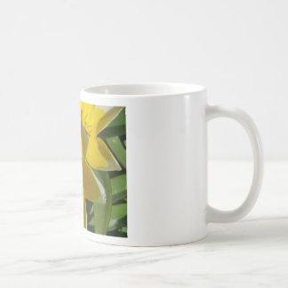 flower,yellow star flowers coffee mug