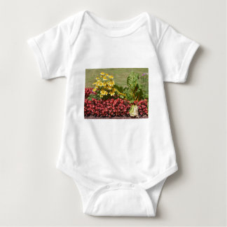 Flowerbed of coneflowers and begonias baby bodysuit