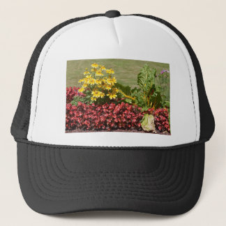 Flowerbed of coneflowers and begonias trucker hat