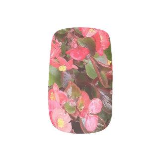 Flowering Begonias Nail Wrap