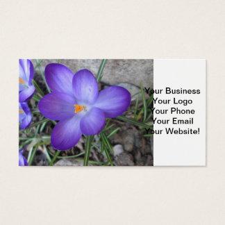 Flowering Crocus Garden Plant Business Card