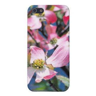 flowering dogwood iPhone 5 cases