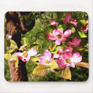 Flowering dogwood mouse pad